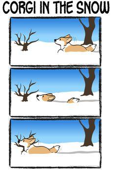 Corgi In The Snow, cartoon