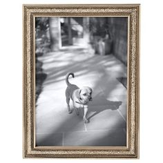 Threshold™ Thin Profile Frame - Golden Mist 5X7 $14.99
