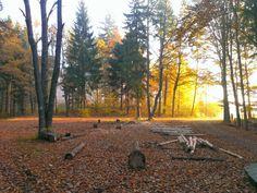Bukowiec i okolice - miejsce do przyjemnego biegania.