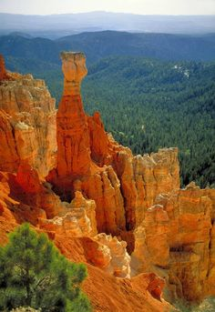 11.) Bryce Canyon National Park, Utah It's Hard To Believe These 30 Natural Wonders Are All In America