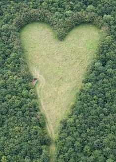 A heart-shaped meadow, created by a farmer as a tribute to his late wife. The point of the heart points towards her birthplace.