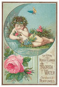Vintage Florida Water Ad with Cherub 1888 Postcard Vintage Labels, Vintage Ephemera, Vintage Cards, Vintage Paper, Vintage Postcards, Vintage Clip, Vintage Signs, Images Vintage, Vintage Pictures