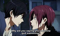 take your marks 5 Anime, Free Anime, Anime Boys, Tree Hd Wallpaper, Swimming Anime, Makoto, Free Eternal Summer, Splash Free, Free Iwatobi Swim Club