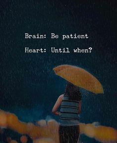 Brain and heart.