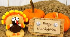 Happy Thanksgiving Baseball Lovers! | Sports at the Beach