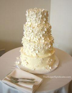 #hitched #instawedding #instabride #australianwedding #wedding #weddingplanner #weddingplanning #engaged #igbride #igdaily #weddingreception