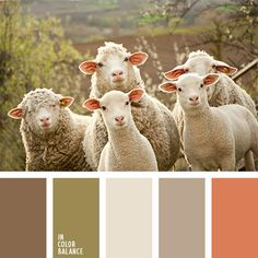 Color inspiration for design, wedding or outfit. More color pallets on… Colour Pallette, Colour Schemes, Color Combos, Sheep And Lamb, Color Balance, Design Seeds, Colour Board, Color Swatches, Colorful Decor