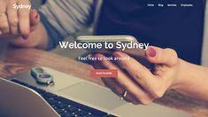 Start A Online Store Free