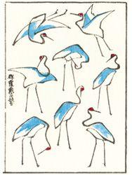 葛飾北斎筆「北斎絵手本集成」手摺木版本 一筆畫譜 Bird Line Drawing, Art Occidental, Japanese Drawings, Drawing Exercises, Asian Tattoos, Japanese Patterns, Japanese Painting, Japan Art, Painting & Drawing