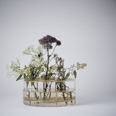 Mjölk : Ang flower Vase in glass and brass by Ami Katz - 30410