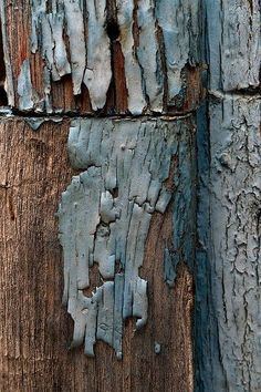 Fabulous textured wood and peeling paint.love the colours too Art Grunge, Tattoo Studio, Foto Macro, Peeling Paint, Texture Art, Wabi Sabi, Blue Brown, Blue Grey, Textures Patterns