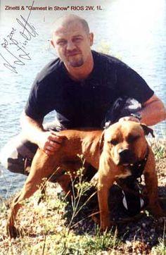 Pitbull Bloodlines, Pitbull Terrier, Bull Terriers, Black Pitbull, Dog Line, American Pitbull, Bully Dog, Real Dog, Dog Games