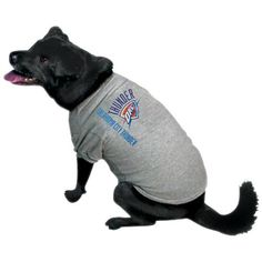 NBA Oklahoma City Thunder Pet T-Shirt -- If you love this, read review now : Dog shirts