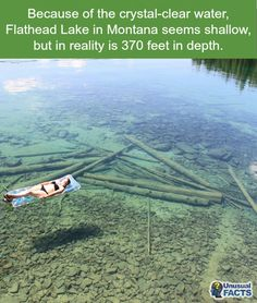 #FlatheadLake may seem shallow because the water is crystal clear, but in reality is 370 feet deep! How amazing is that?!