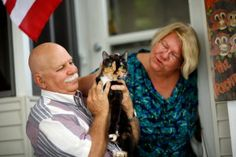 The Cat That Crossed 2000 Miles To Come Home | News-Hound
