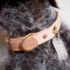 Love this handmade leather collar.