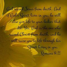 Romans 8 : 11