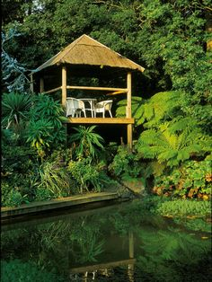 "A Lush, Exotic Tropical Garden --> www.c…""> A Lush, Exotic Tropical Garden –> www."
