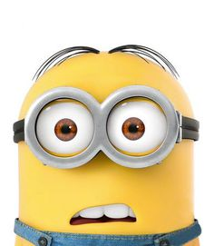 minions // despicable me. This what I feel I look like at a staff meeting.