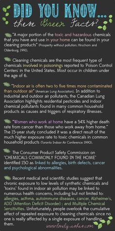 What Effect Are Chemicals Having on Your Home? www.lovely-ashes.com