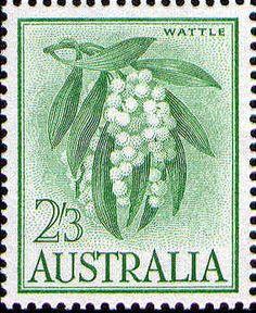 Wattle on White Paper -- Issued October Australian Native Flowers, Australian Plants, Old Stamps, Vintage Stamps, Decimal, Australian Painting, Postage Stamp Art, Flower Stamp, Vintage Artwork