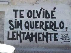 Te olvidé   Sin quererlo,  Lentamente #Acción Poética Tucumán #calle