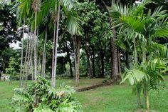 City Review: Kuala Lumpur, Malaysia - http://traveluxblog.com/2014/10/02/city-review-kuala-lumpur/ #city #review #malaysia #kl #kualalumpur #wanderlust #travel