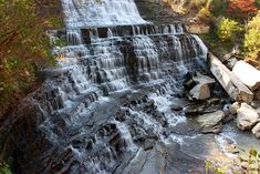 Canadian News - Albion Falls fencing may be just the start - Hamilton in - Todays Weather and News Albion Falls, Hamilton Ontario Canada, Nature Photography, Travel Photography, Todays Weather, Autumn Scenery, Future Travel, Oh The Places You'll Go, Day Trip