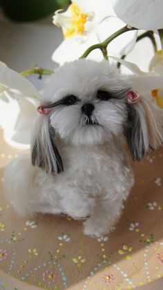 Brooch SHIH TZU/ Felted Miniature Animal Sculpture Portrait /Pet portrait Custom…