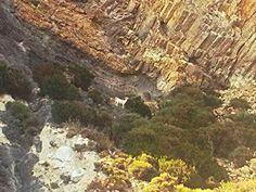 Isola di Palmarola - gli incredibili colori cangianti delle varie formazioni rocciose dell'isola, stabilmente abitata solo da capre selvatiche | da Lorenzo Sturiale