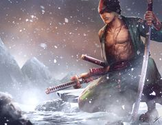 Roronoa Zoro Pirate Hunter One Piece