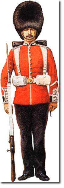 British Infantry: Grenadier Guards 1886