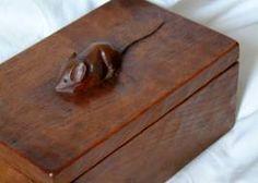 mouseman box