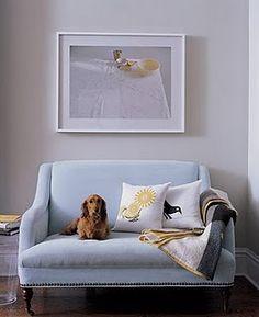 Prachtig model (zowel de zetel als de hond)