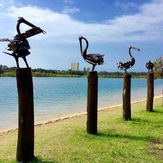 The early bird gets the pole #currumbincreek #currumbinbeach #surfing #AMAZING_AUSTRALIA_ #ausfeels #australia #australia_oz #aussiephotos #bestplacestogo #discoverqueensland #EXPLORINGAUSTRALIA #goldcoast #goldcoast4U #igersgoldcoast #ig_australia #_IG_photobox #igs_oceania #livinggc #loves_oceania #loveyouqueensland #queensland #queensland_captures #socialifeaustralia #sunny_queensland #thisisqueensland #visitqueensland #visitgoldcoast  #wow_australia #tourismqueensland #tourismaustralia…