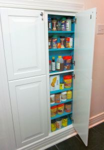 DIY shallow pantry between studs- would like to do this in our upstairs bath