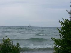 Enjoying the day at Presqu'ile Park for collecting Ontario, Swimming, Canada, Fish, Park, Twitter, Drinks, Beach, Outdoor
