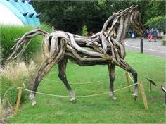 Especie rara de caballo