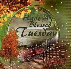 Have A Blessed Tuesday Day Tuesday Tuesday Quotes Tuesday Blessings Tuesday  Images Tuesday Quote Images