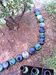 Recycled Beer Bottle Garden Edging