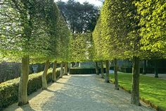 Landscape designer Fernando Caruncho complements the crisply sculptural buildings at his Madrid atelier with captivating, elegantly austere gardensRobert Redford, Julia Roberts, Benedict Cumberbatch, Orlando Bloom, and Ben Stiller share their favorite natural settingsLee F. Mindel salutes summer with a survey of beautiful hedges from the HamptonsTopiary gardens are where lush greenery combines with structure and form for a magical result. Check out these amazing gardens, open to the public