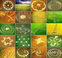Crop Circles!