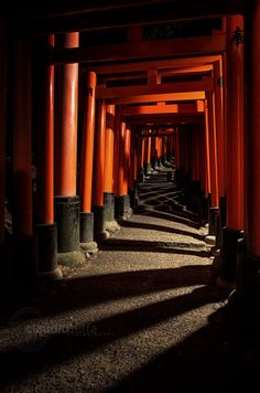 """A path of lights and shadows"" in Fushimi Inari Taisha, Kyoto."