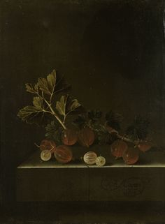 A Sprig of Gooseberries on a Stone Plinth, 1699, Adriaen Coorte