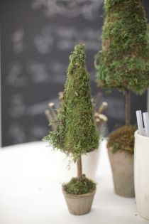 moss topiary Christmas tree. Pot could be red with star on top.
