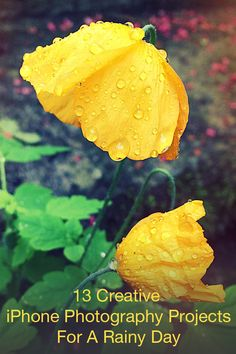 13 Creative iPhone Photography Projects For A Rainy Day: http://iphonephotographyschool.com/rainy-day-projects/ A rainy day is no excuse for not taking great iPhone photos!