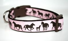love this for horse show dogs