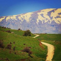 Mount Hermon from the Golan Heights in spring. Psalm 42:6. #visitisrael