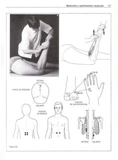 shiatsu massagekudde test