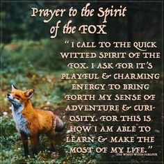 FOX, SPIRIT, prayer, blessings, shaman, witch, nature, animal, totems, meaning, symbolism, metaphysical, magick, enchanted, awakening, adventure, book of shadows. www.whitewitchparlour.com